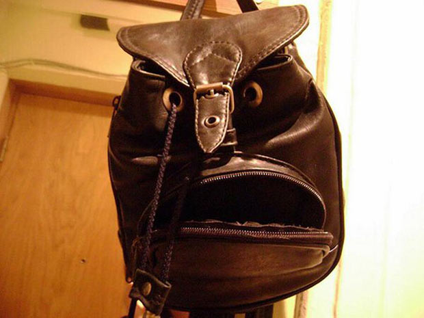 35 Funny Pics ~ angry purse face