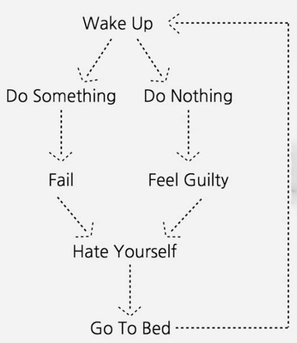 33 Funny Pics ~funny flow chart: wake up do something go to bed