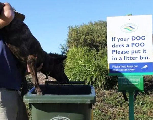 33 Funny Pics ~ funny signs, please put dog poo in ... man putting dog in trashcan
