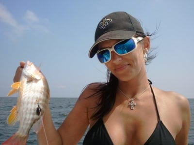 Fish Types Found Fishing In Biloxi Mississippi And Gulf Of Mexico