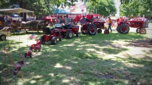 photo of several tractors in a row