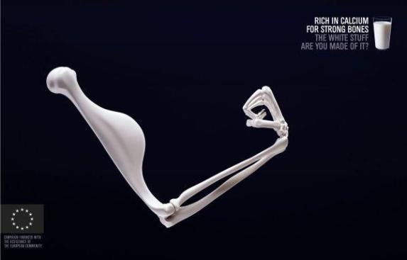 Chia_seeds_strong_bones