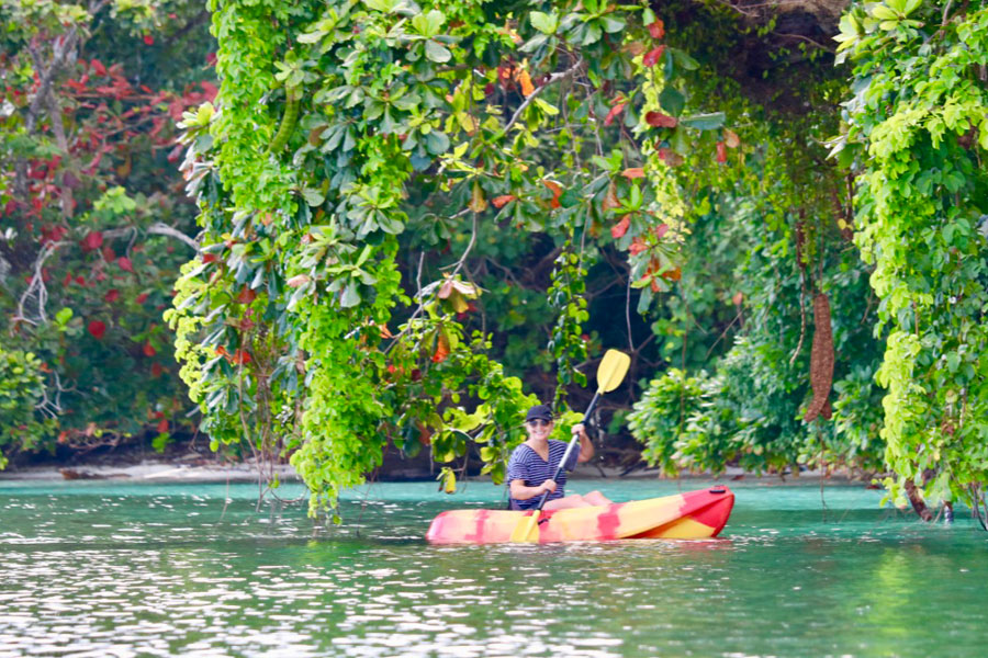 Kayaking the Shoreline of Papua Paradise