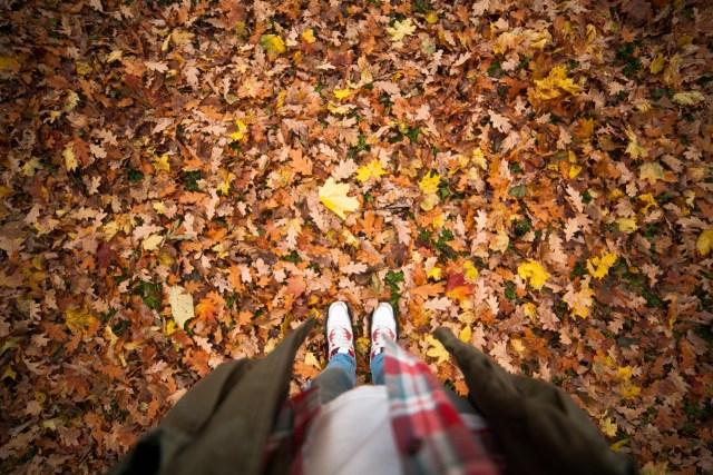 Autumn self love