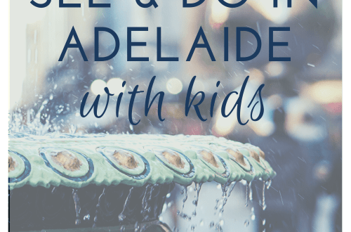 What to do and see in Adelaide with kids: 10 cheap and fun things to do: Tips from a local: Image of fountain outside Adelaide Arcade and the Malls Balls: Image from canvases