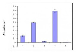 p50 RhoGAP activity measured by GTP hydrolysis by RhoA and Rac1 protein.