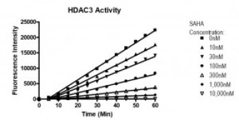 HDAC 3 results - HDACs in Cancer