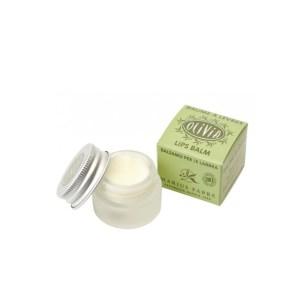 balsamo labbra biologico 7ml con olio d'oliva e burro di karitè marius fabre tec-terreecolori calestano-parma