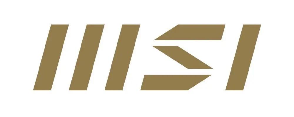 MSI new logo cr