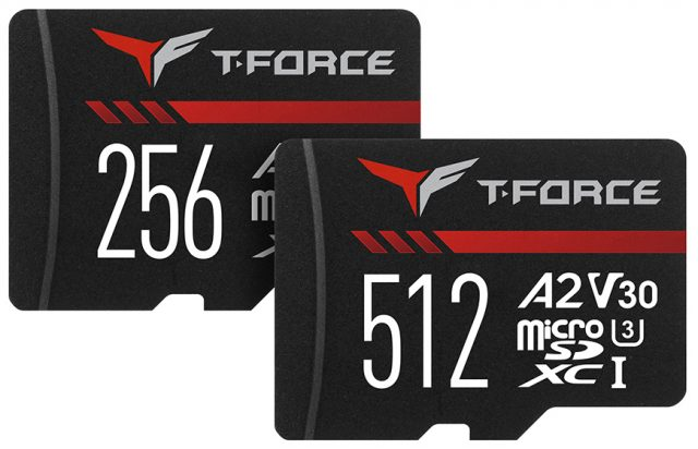 TEAMGROUP GAMING A2 microSD