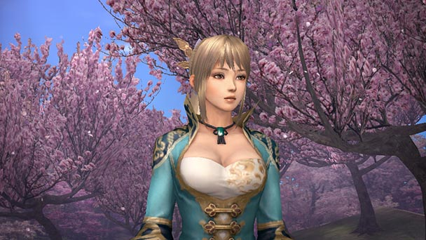 Dynasty Warriors 8 Empires3
