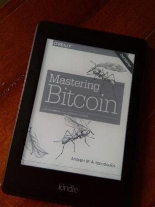 navera ashraf - mastering bitcoin