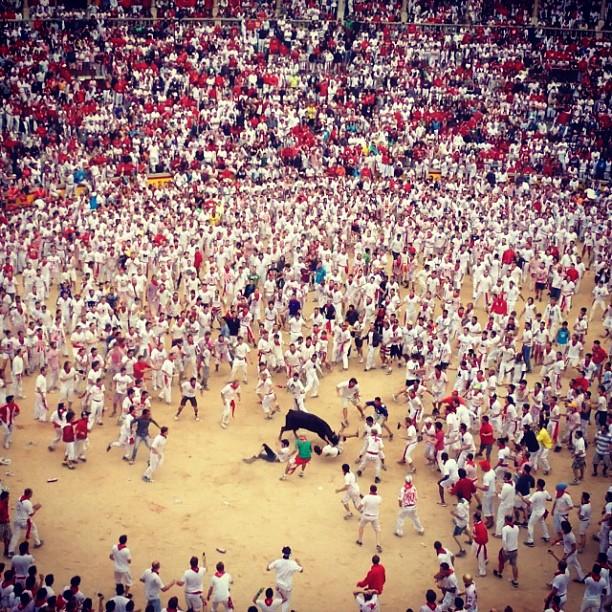 صراع الثيران في أسبانيا