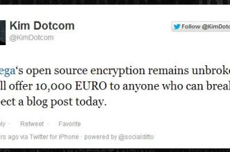 mega security
