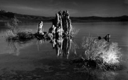 : الانتباه ينصب على العنصر المرتفع عن البحيرة (الصخرة) ثم العنصر الثانوي (الشجيرة) طبقًا للتباين الواضح فيما يحيط بهما.