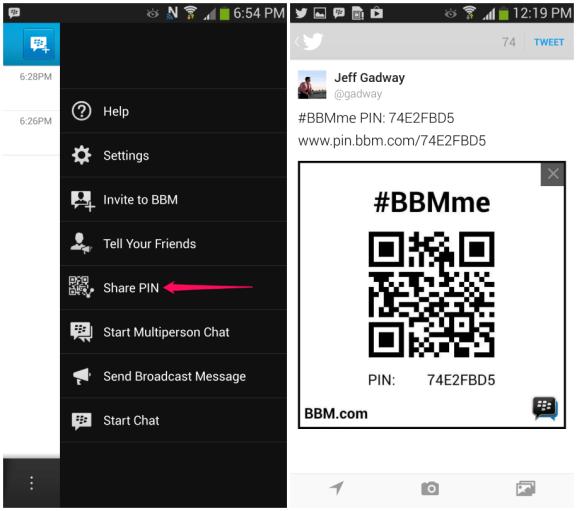 bbm4-sharepin