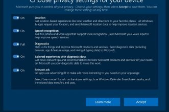 privacy with Windows 10
