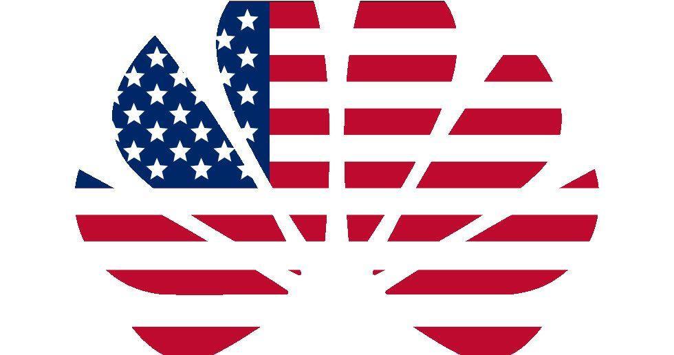 الولايات المتحدة ربما تخفف عقوبة هواوي مؤقتًا لإنجاز مشاريعها القائمة