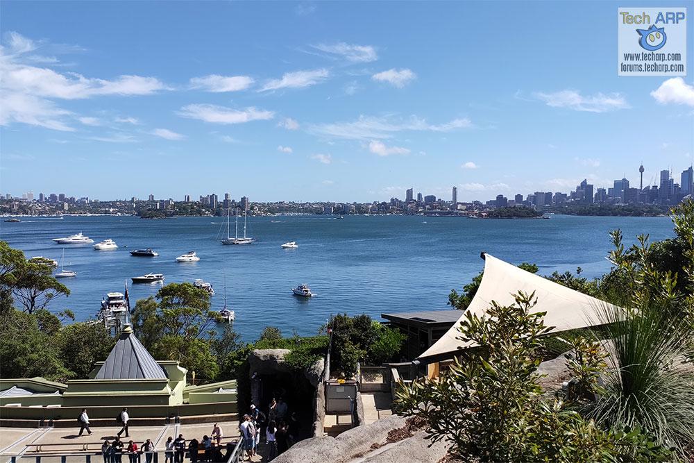OPPO R17 Pro Photos Of Sydney - Taronga Zoo
