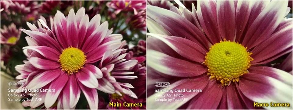 Samsung Galaxy A51 camera comparison : main camera vs macro camera