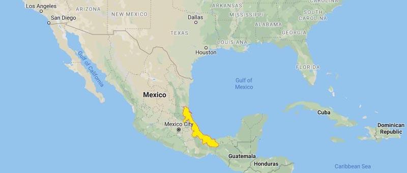 Veracruz Mexico H1N1 2009