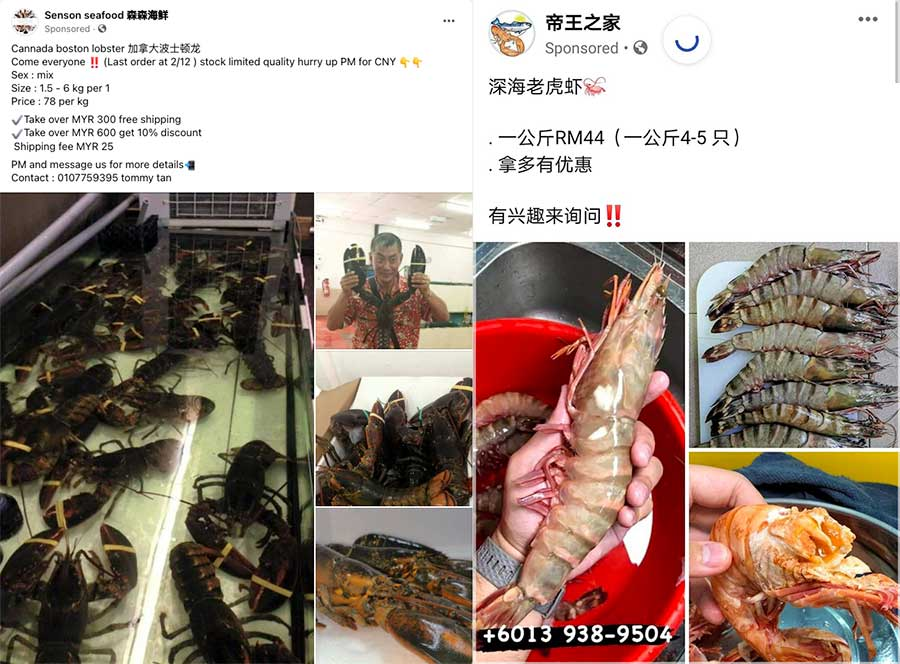 Facebook seafood reported scam pages 01