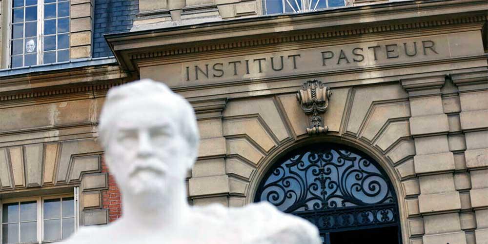 Pasteur Institute Confirmed Ivermectin Effective vs COVID-19?