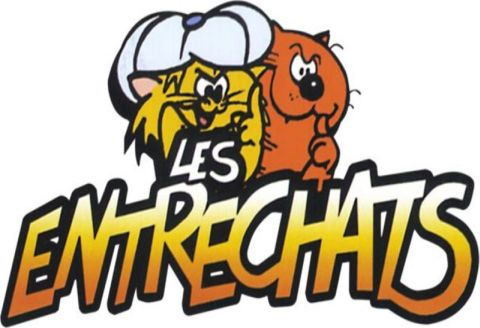 Les entrechats - TAG - TechArtGeek