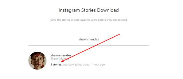 Save Instagram Stories Online