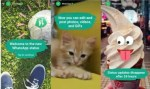 New Snapchat Like Feature Known As WhatsApp Status Has Been Updated On Whatsapp Chat App
