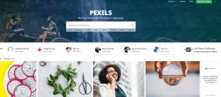Pexels -Free Stock Photos