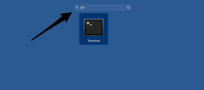 Search for terminal