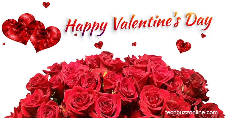 Happy Valentine's Day Greeting Card - 10