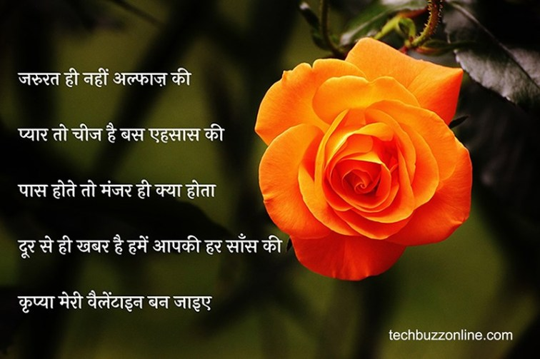 valentine day wishes in hindi 14