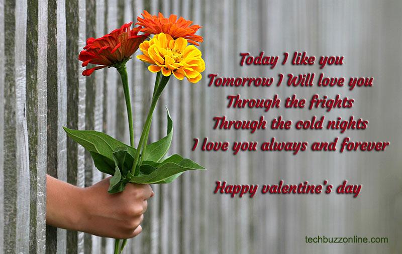 Valentine Wishes 4