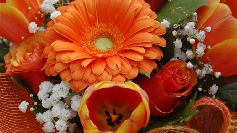 1 flower