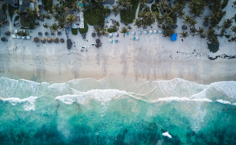 beach shore during daytime