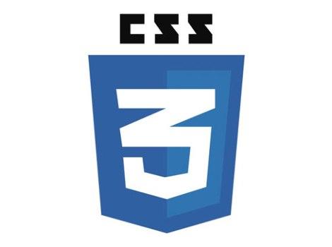 Logo di CSS3