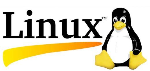 Quale distribuzione di Linux scegliere? 2