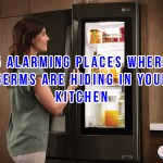 5 Alarming Places Where Germs Are Hiding In Your Kitchen