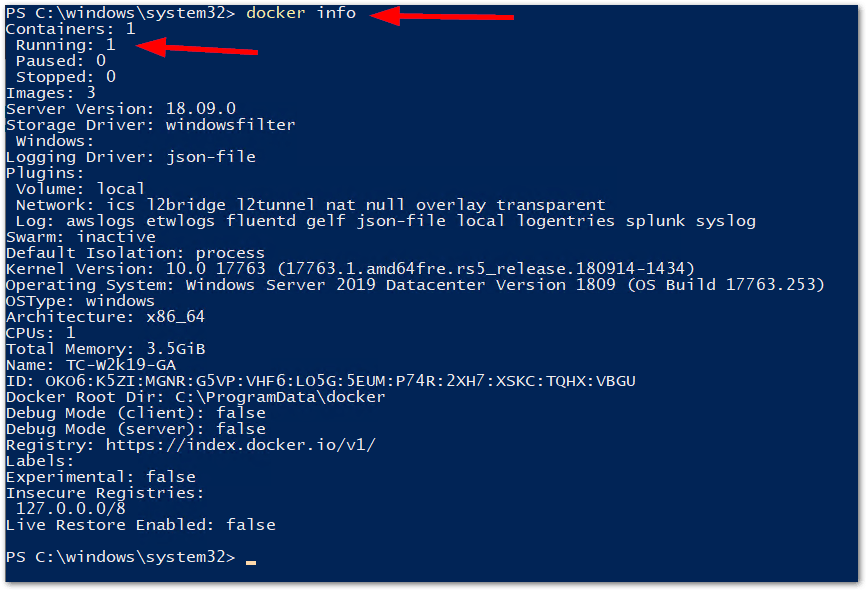 Windows Server 2019 Generally Available: docker info again