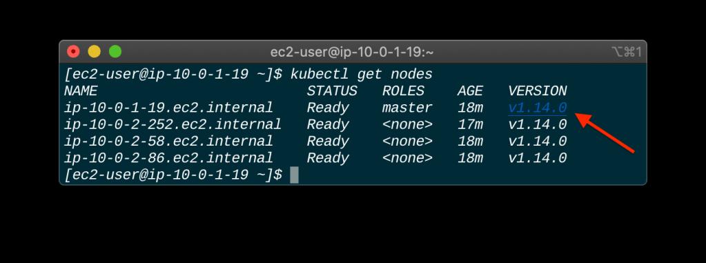 Upgrade A Kubernetes Cluster Using Kubeadm status