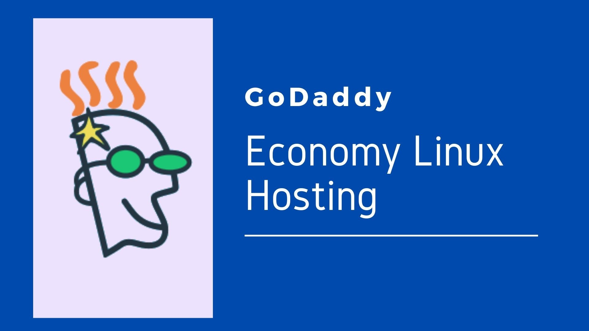 What is Economy Linux Hosting with cPanel From Godaddy Plans Good Value?