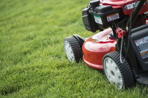 The Convenience of Buying Lawnmower Spare Parts Online
