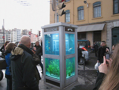 Phone-Box-Aquarium.jpg