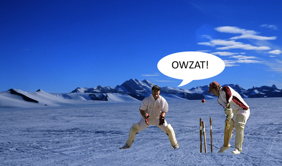 cricket-everest.jpg