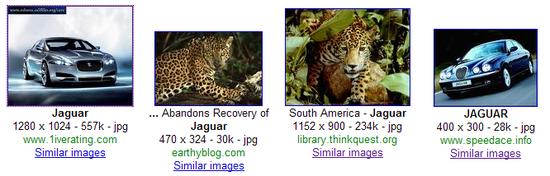 jaguar-screen-crop01.png