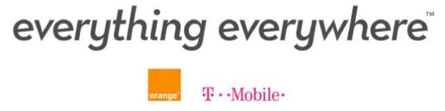 everythingeverywhere_logo.jpg