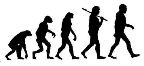 evolution-of-man.jpg