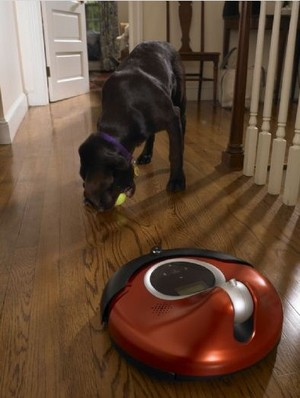 irobot-connectr-dog.jpg
